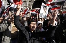 'Whitewash' – Protests rage in Syria as Arab League monitors arrive