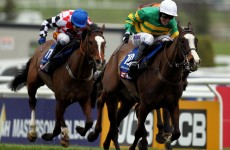 Gold Cup win for Synchronised at Cheltenham