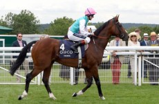 World's greatest Frankel back in action and set for Lockinge test on 19 May