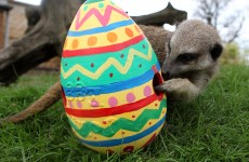 What has Easter got to do with buns, bonnets and bunnies?