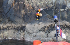 In pictures: Lifeboat crew scale cliff to rescue sheep in Cork