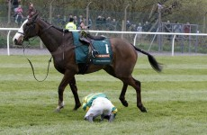 Poll: Is the Aintree Grand National cruel?