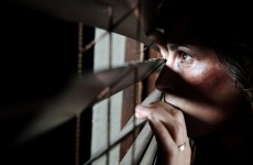 New committee report will 'lift the lid' on domestic abuse