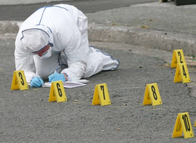 A member of the Garda Technical Bureau at the scene of Dean Johnson's death.