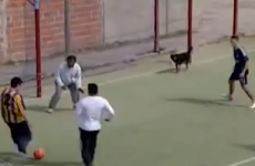 Dog left wide open at far post, inevitably scores