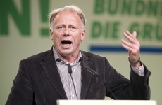 Leader of Green Party in Germany regrets 1980s 'paedophile pamphlet'