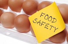 Closure orders served on nine businesses by Food Safety Authority in October