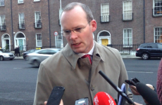 Broad reform needed to make Seanad 'fit for modern Ireland', says Coveney